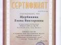 Сертификат за участие во всероссийском конкурсе «Оформление музыкального зала» с работой: «Осень 2015»